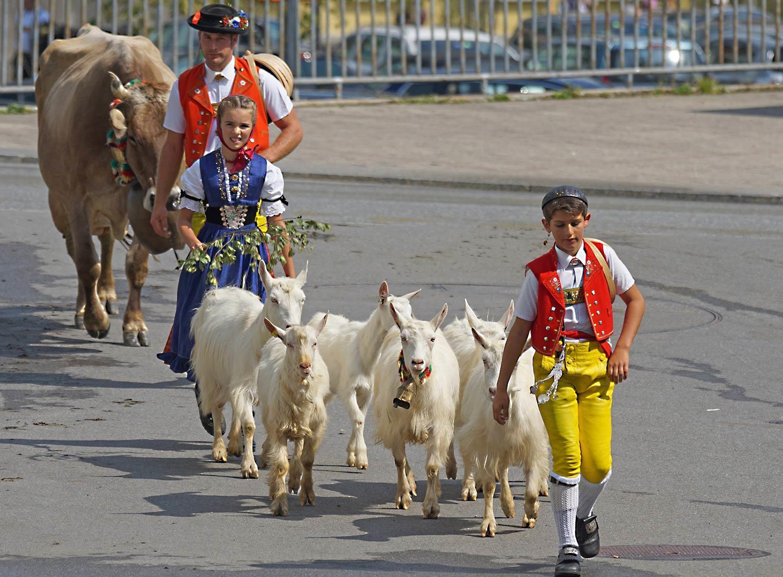 Menschen und Tiere in der Schweiz