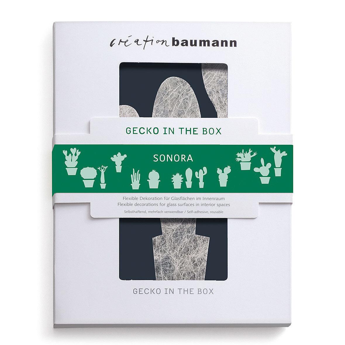 gecko in the box sonora verpackt creation baumann e1532089796930