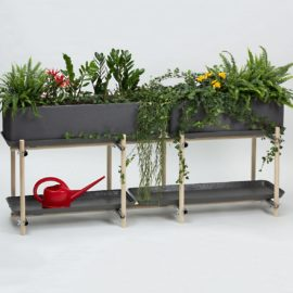 pflanzen kraeuterregal bepflanzt horizontal eternit