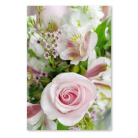 blankokarte rose
