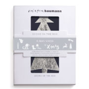 gecko in the box xmas varia verpackt creation baumann