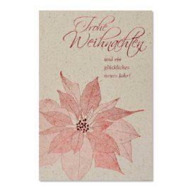 weihnachtskarten rote weihnachtsstern abc